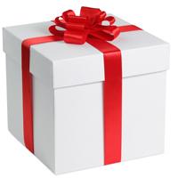 Segway Gift Voucher